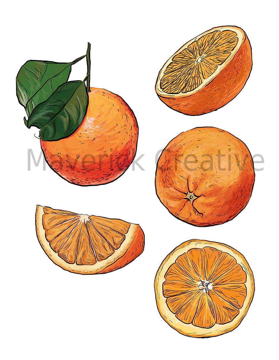 oranges_72dpiwatermark